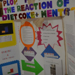 Science Fair 2014 5