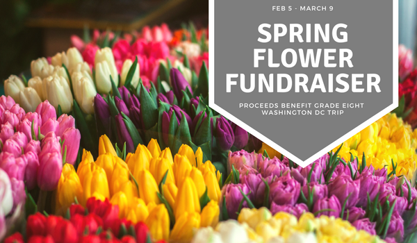 Spring Flower Fundraiser Dc Fundraiser Through 3 9 Bfccps